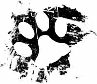 Schwarze Katzenpfote
